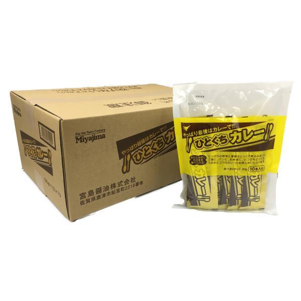 ひとくちカレー 宮島醤油 30g×10本入 10セット(1箱 )個包装 スティックタイプのカレー お弁当に