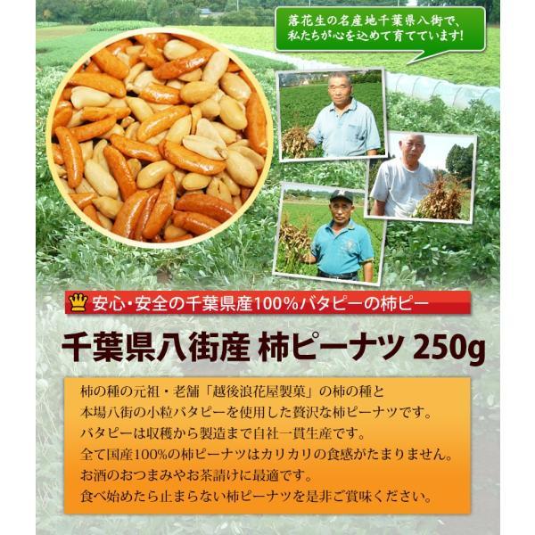 八街産落花生のバタピーと老舗の柿の種で作った柿ピー250g 千葉県産落花生|endo-peanuts|02