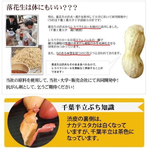 30年度産 新豆落花生 素煎(千葉半立)400g 千葉県八街産落花生|endo-peanuts|05
