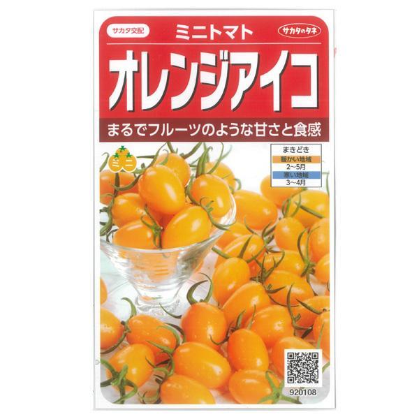 トマト:ミニトマト オレンジアイコ サカタ 野菜タネ|engei