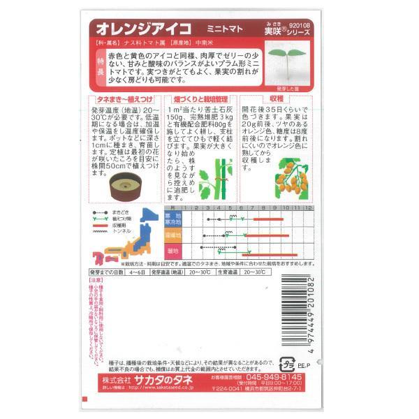 トマト:ミニトマト オレンジアイコ サカタ 野菜タネ|engei|02