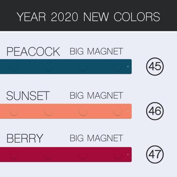 マグネットボード おしゃれな 壁掛け マグネット ストリップ ショート 送料無料 壁掛け 収納 グッズ 5cm×35.5cm 100g|enitusa|06