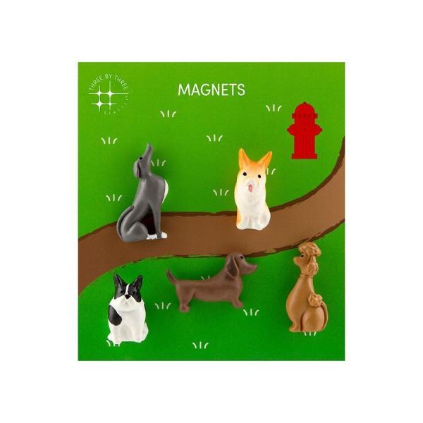かわいい 磁石 ネオジム アニマル マグネット イヌ ネコ ハリネズミ ウサギ テントウムシ アヒル|enitusa|12