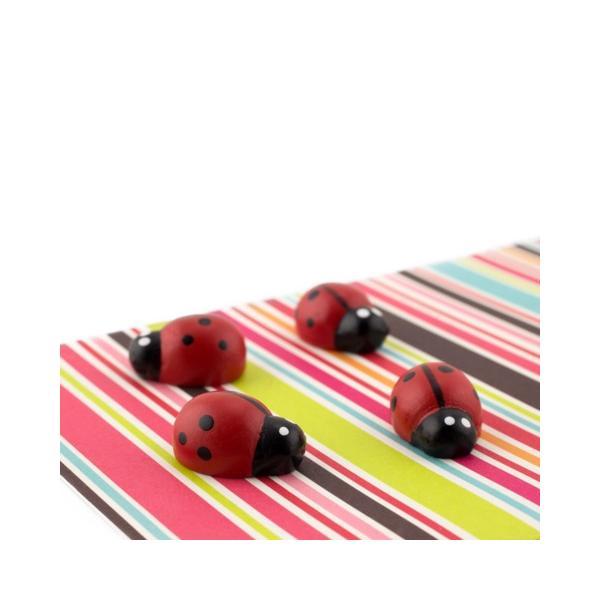かわいい 磁石 ネオジム アニマル マグネット イヌ ネコ ハリネズミ ウサギ テントウムシ アヒル|enitusa|13