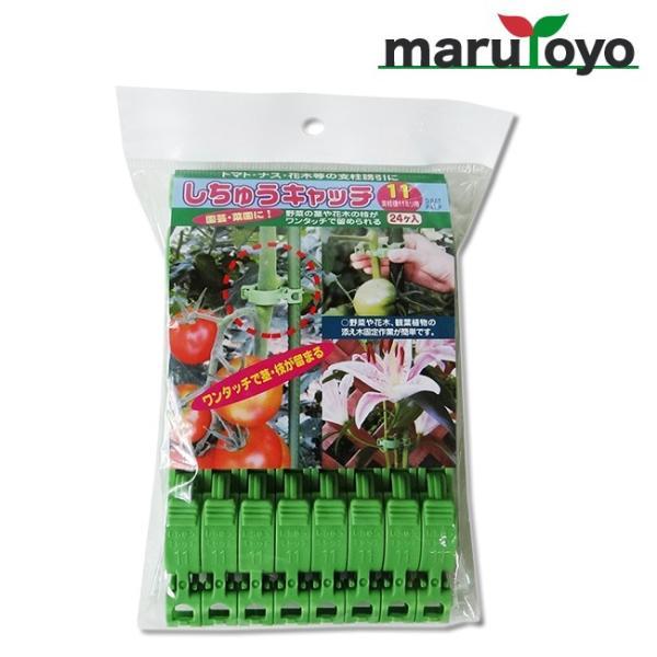 園芸用保持具 しちゅうキャッチ11 緑 24個入 S11G-24【誘引】【花】【木】【トマト】【ナス】