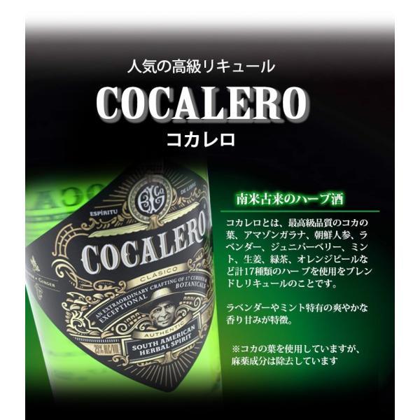 送料無料 コカレロ COCALERO 700ml リキュール 29度 正規品 enokishouten 02