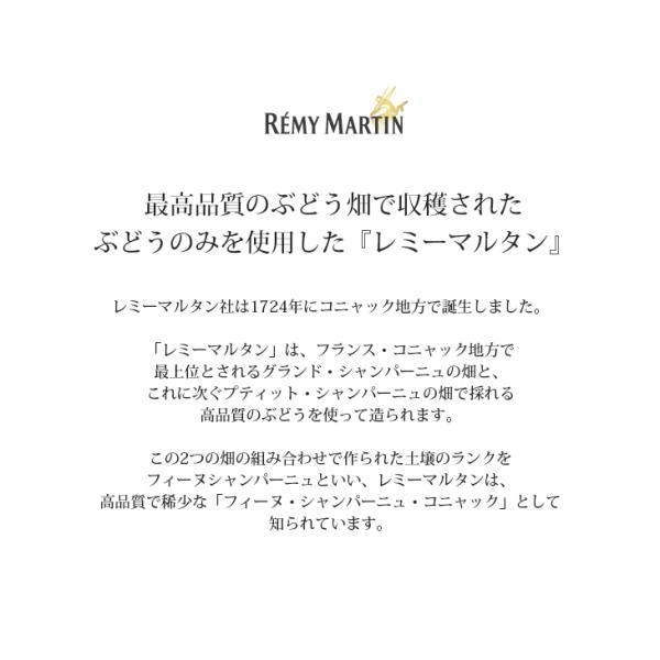 送料無料 レミーマルタンVSOP 700ml ブランデー コニャック 40度 正規品 箱付 enokishouten 03