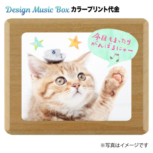 Design Music Boxロゴとサンプル写真