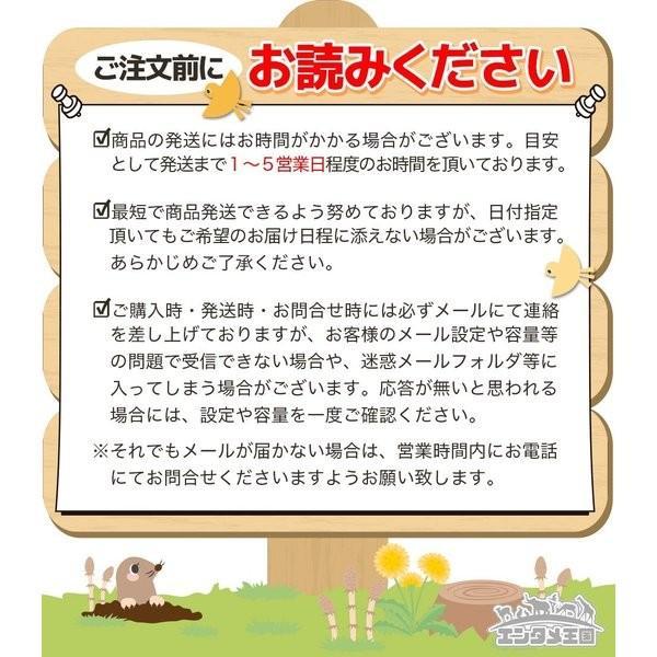 ゲームキューブ 本体 中古 GC 3点セット 選べる4色 ACアダプタ AVケーブル 中古 送料無料|entameoukoku|11