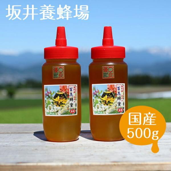 はちみつ 国産 500g×2本セット 1kg 百花蜂蜜 H500/坂井養蜂場 百花蜜 ハチミツ ハニー スイーツ パンケーキ 上質 上品 抗菌作用 蜂 養蜂 養蜂場 甘味