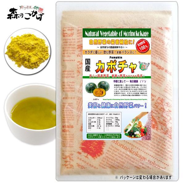 国産 カボチャ 粉末 100g パンプキン パウダー 野菜粉末 送料無料 ポイント消化 森のこかげ 売筋粉