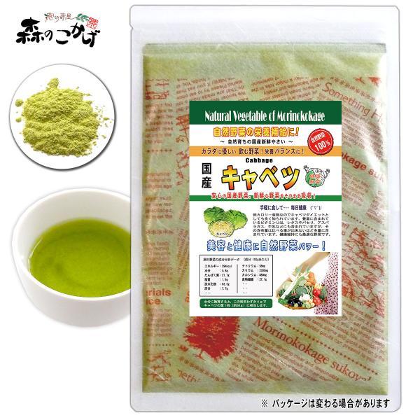 国産 キャベツ 粉末 100g きゃべつ パウダー 野菜粉末 送料無料 ポイント消化 森のこかげ 売筋粉