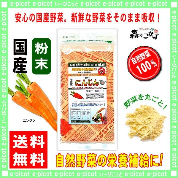 国産 ニンジン 粉末 100g にんじん 人参 パウダー 野菜粉末 送料無料 ポイント消化 森のこかげ