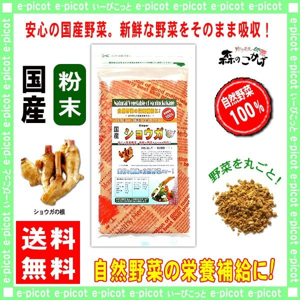 国産 ショウガ 粉末 50g 生姜 ジンジャー パウダー 野菜粉末 送料無料 ポイント消化 森のこかげ 売筋粉