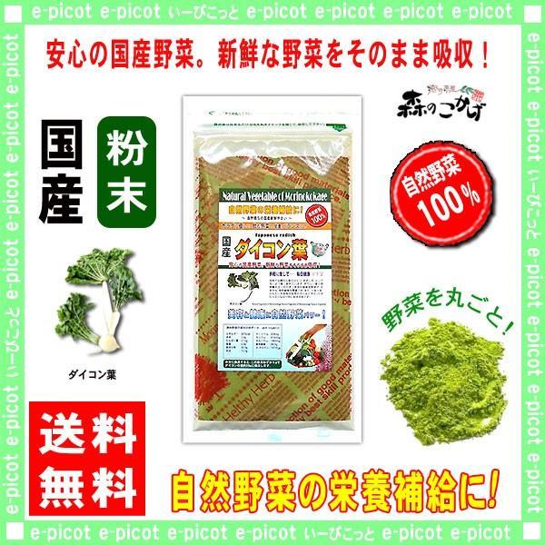 国産 大根 葉 粉末 100g だいこんは パウダー 野菜粉末 送料無料 ポイント消化 森のこかげ