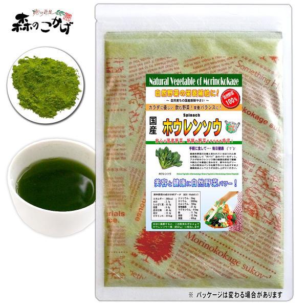 国産 ホウレンソウ 粉末 100g ほうれん草 パウダー 野菜粉末 送料無料 ポイント消化 森のこかげ 売筋粉