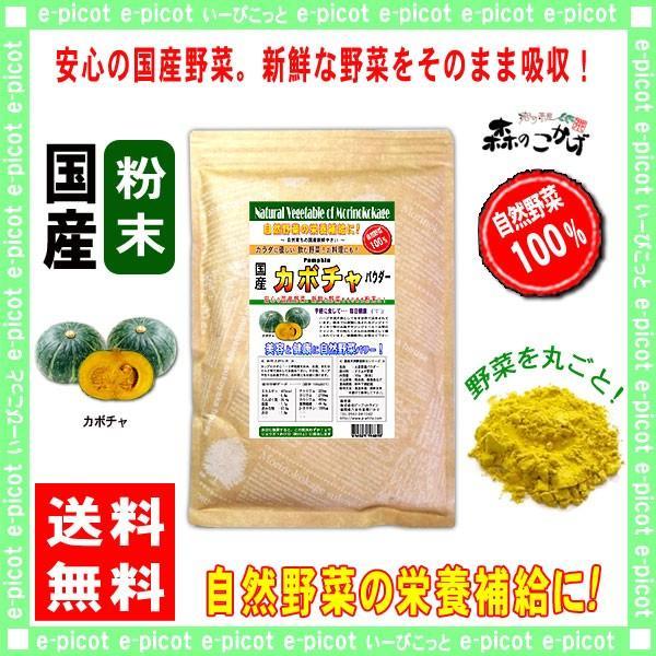 国産 カボチャ 粉末 300g パンプキン パウダー 業務用 野菜粉末 送料無料 森のこかげ 売筋粉