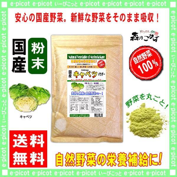 国産 キャベツ 粉末 300g きゃべつ パウダー 業務用 野菜粉末 送料無料 森のこかげ 売筋粉