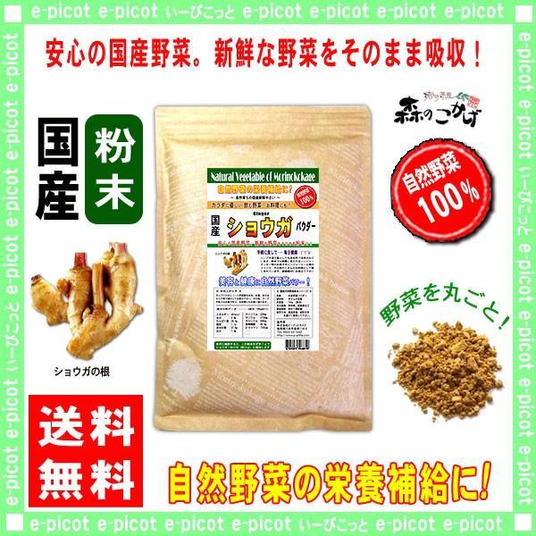 国産 ショウガ 粉末 200g 生姜 ジンジャー パウダー 業務用 野菜粉末 送料無料 森のこかげ 売筋粉