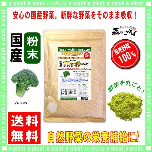 国産 ブロッコリー 粉末 300g ぶろっこりーパウダー 業務用 野菜粉末 送料無料 森のこかげ