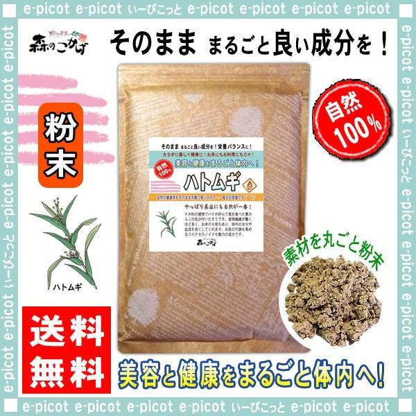 はとむぎ茶 粉末 500g はと麦 鳩麦 ハト麦 ハトムギ パウダー 送料無料 森のこかげ