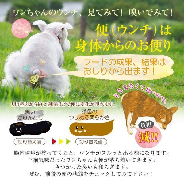 NATURAL ENERGY 国産プレミアムドッグフード 1kg 成犬用(ナチュラルエナジー 無添加 チキン)(送料無料)|escoshop|14