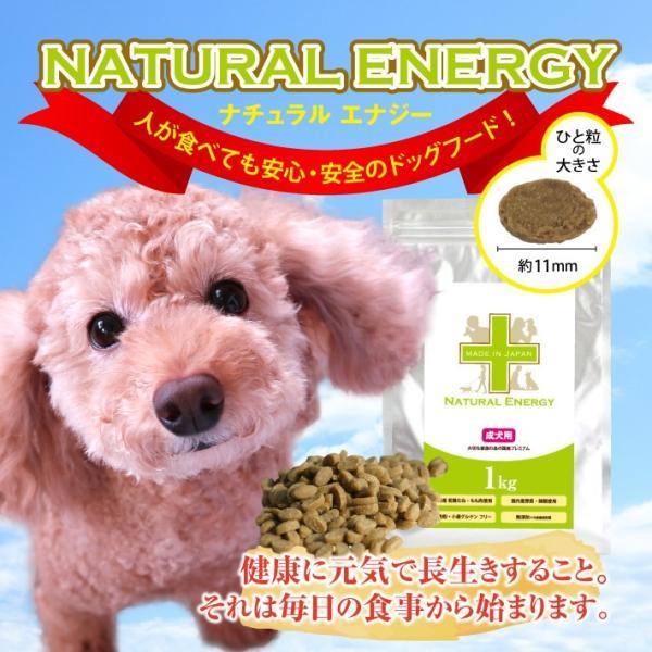 NATURAL ENERGY 国産プレミアムドッグフード 1kg 成犬用(ナチュラルエナジー 無添加 チキン)(送料無料)|escoshop|03
