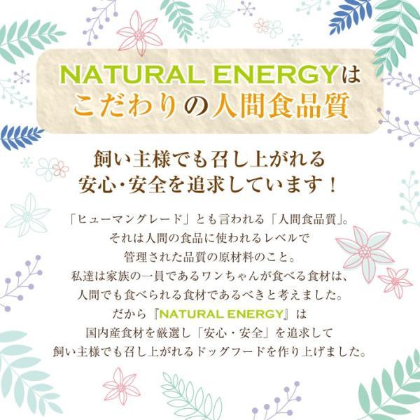 NATURAL ENERGY 国産プレミアムドッグフード 1kg 成犬用(ナチュラルエナジー 無添加 チキン)(送料無料)|escoshop|04