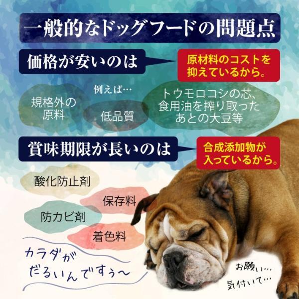 NATURAL ENERGY 国産プレミアムドッグフード 1kg 成犬用(ナチュラルエナジー 無添加 チキン)(送料無料)|escoshop|08
