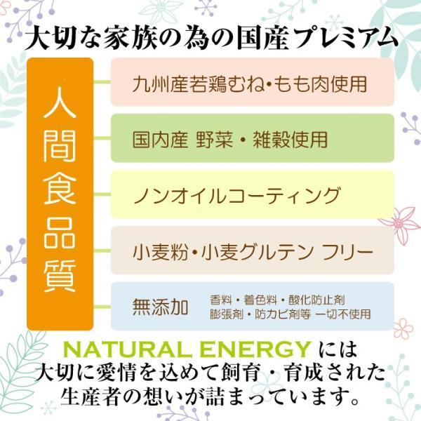 NATURAL ENERGY 国産プレミアムドッグフード 1kg 成犬用(ナチュラルエナジー 無添加 チキン)(送料無料)|escoshop|09
