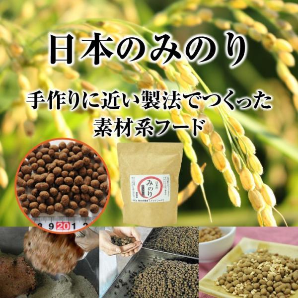 サンユー 純国産プレミアムドッグフード 日本のみのり  ビーフ 800g(犬 ごはん ドッグフード 牛 牛肉 鮮度重視 総合栄養食 全犬種 全年齢対応 )|escoshop|02