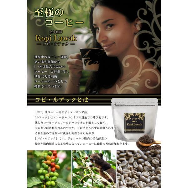 北斗珈琲 コピ・ルアック コーヒー 200g (コピルアク コピルアック 高級 コーヒー ギフト 希少 高級 インドネシア Kopi Luwak)(送料無料)|escoshop|02