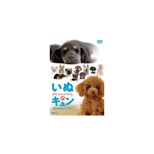 いぬキュン 癒しのわんこシアター We Love Dog 【DVD】