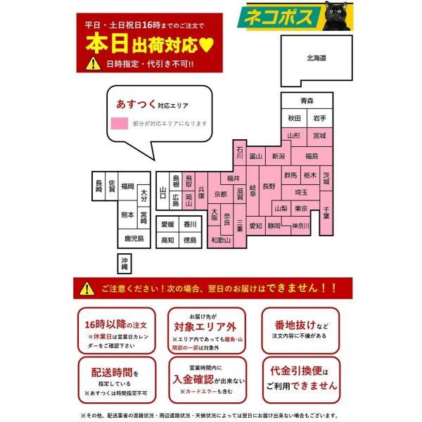 【あすつく☆】アイコス3(IQOS3)  新型 ホルダー単品 全4種類より 製品未登録 esmart 03