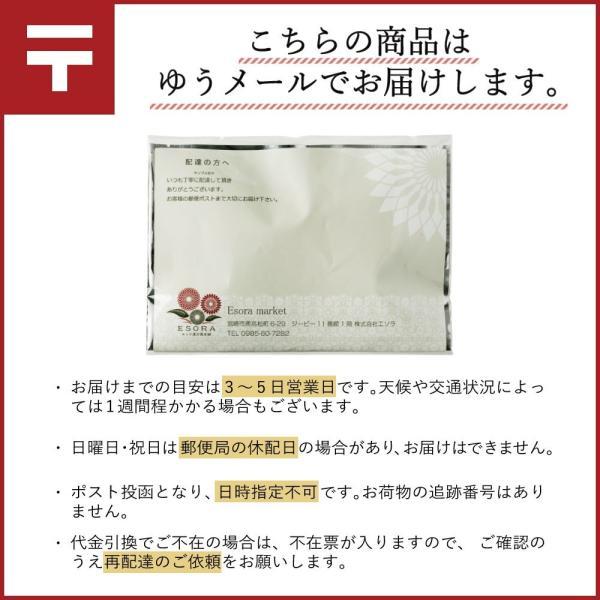 ダイエット 茶 漢方屋の ダイエットティー 七美茶 20包 トライアル|esora|12