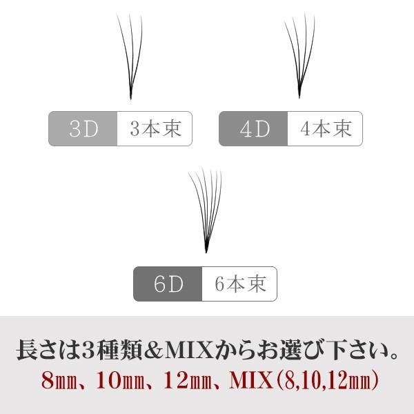 3D・4D ・6D プレミアム セレブ ラッシュ / 3D ボリューム or 4D ボリューム or 6Dボリューム(0.06mm) / 3本束 or 4本束 or 6本束|esthenojikan|05
