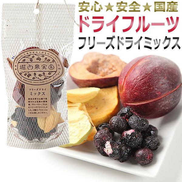 国産 堀内果実園ドライフルーツ/フリーズドライミックス 34g(すもも・種無柿・ブルーベリー)