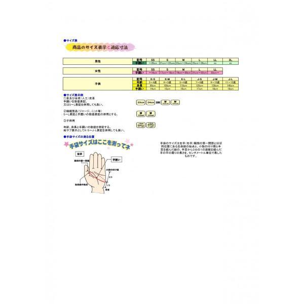 TR81 トライワンプログローブ ETHOS エトス TRY1 ethosdesign 06