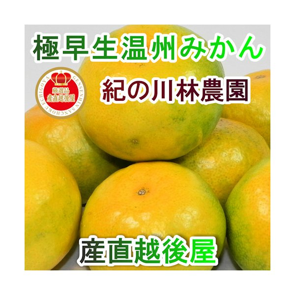 フルーツ みかん 熟成みかん 和歌山県 紀の川 林農園 極早生みかん 5kg 秀優混合 2S〜Lサイズ混合 家庭用ミカン 送料無料