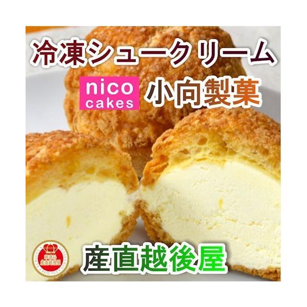 スイーツ 洋菓子 冷凍シュークリーム 青森県創作洋菓子店 小向製菓 冷凍シュー バニラ味・ショコラ味各5個 合計10個 送料無料
