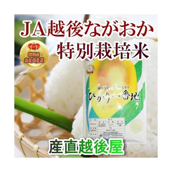 米 令和3年産 新米 コシヒカリ 20kg 特A地区 特別栽培米 新潟産 JA越後ながおか農協 産地限定米 送料無料