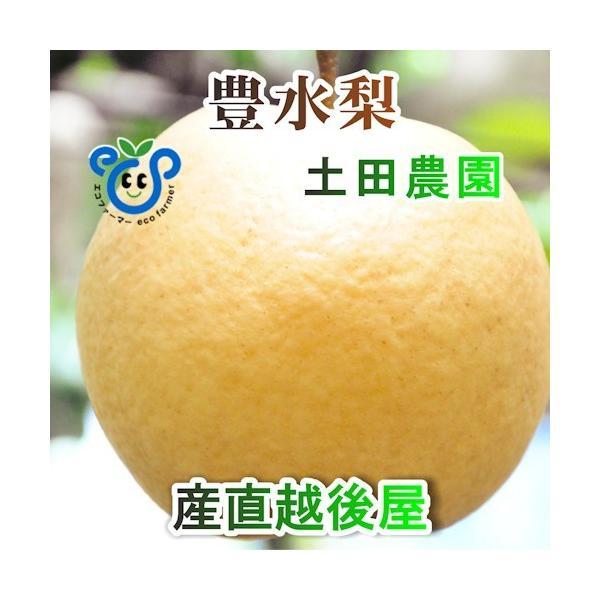 フルーツ 梨 和梨 豊水 新潟県 エコファーマー認定農園 土田農園 有機栽培 豊水梨 贈答品 5kg(9個〜14個)送料無料