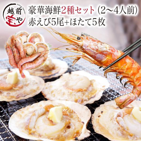 海鮮バーベキュー 海鮮セット 福袋 詰め合わせ 2種 生 赤えび 5尾 ほたて 5枚 セット (2〜4人前)  ギフト 海鮮鍋 海鮮丼 おせち バーベキュー BBQ*冷凍*