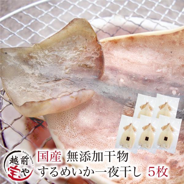 干物 越前産 イカ いか スルメイカ 5枚 干物セット 真空パック 一夜干し するめいか ((冷凍))