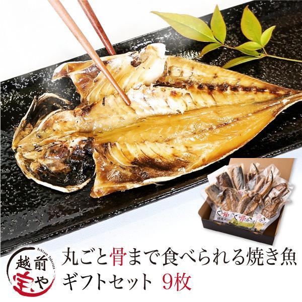 ギフト プレゼント  焼かずにそのまま 丸ごと 骨まで食べられる 干物 焼き魚 塩・燻製・醤油 9枚 送料無料 ≪常温≫ レンジで温めるだけ