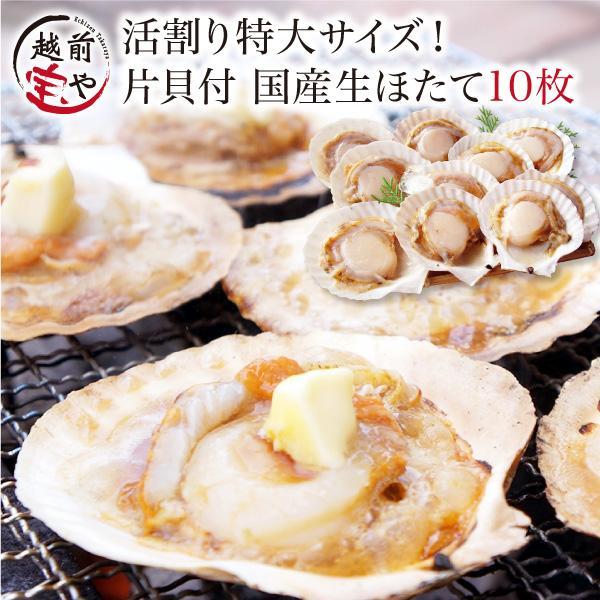 海鮮バーベキュー ホタテ 殻付き 生 片貝付 特大 10枚入セット ほたて 帆立 海鮮鍋 海鮮グルメ BBQ ((冷凍))