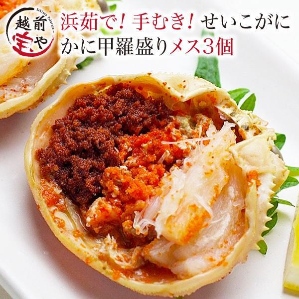 プレゼント ギフト セイコガニ 甲羅盛り 3個セット かに カニ 蟹 せいこがに 香箱ガニ 越前ガニ ((冷凍))