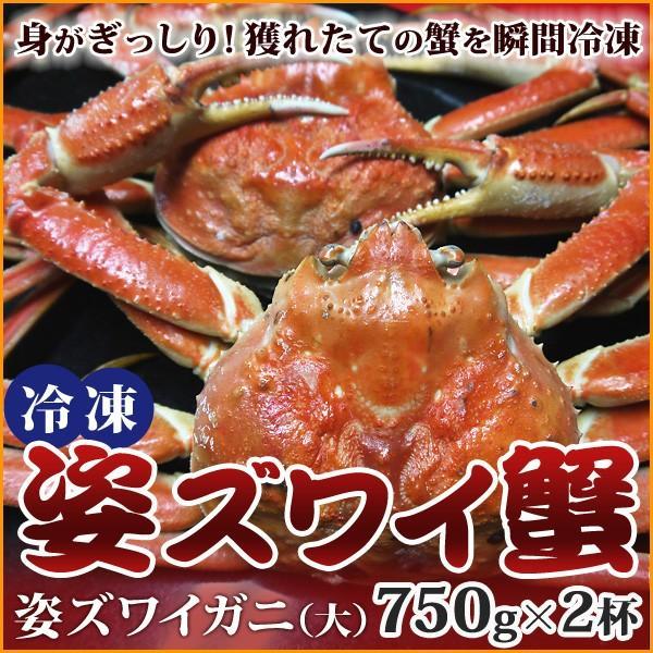 【送料無料】姿ズワイガニ(大) 750g × 2杯【ずわいがに・蟹】[冷凍]|etizenwakasa