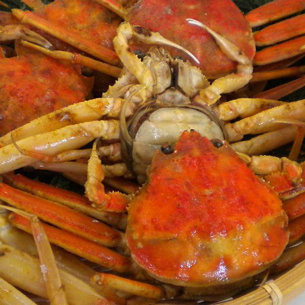 わけありせいこがに(小)福井県産せいこ蟹(訳ありセイコガニ) 約100g×1杯|etizenwakasa|02