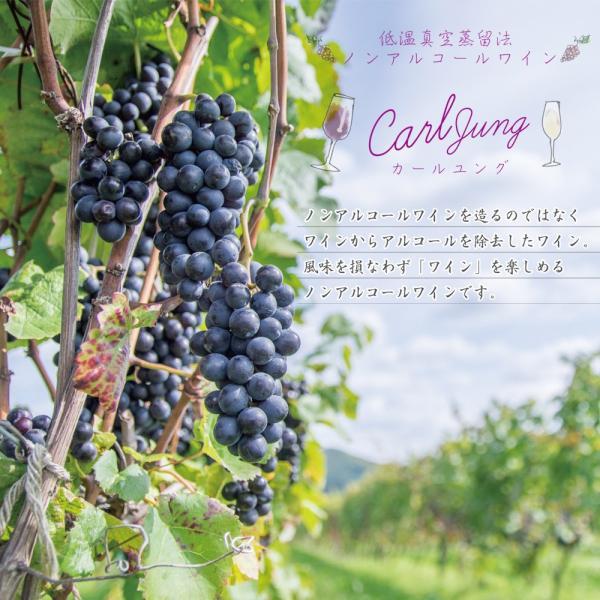 カール ユング スパークリング 750ml ノンアルコールワイン ドイツワイン|etoshin|02